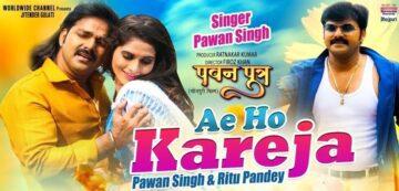 Ae Ho Kareja Lyrics - Pawan Singh