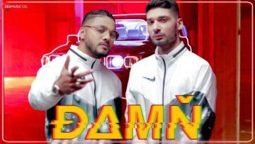 Damn Lyrics - Raftaar Ft. KRSNA