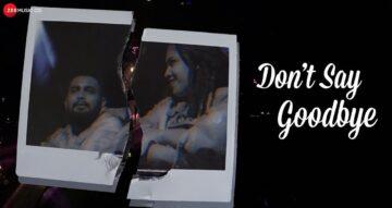 Don't Say Goodbye Lyrics - Sinykle