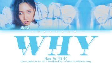 Why Lyrics - Hwasa