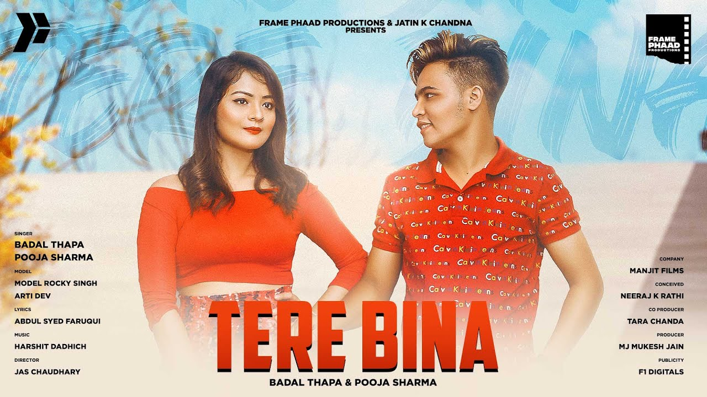 Tere Bina Lyrics - Badal Thapa x Pooja Sharma