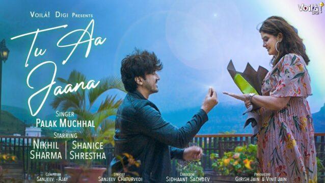 Tu Aa Jaana Lyrics - Palak Muchhal
