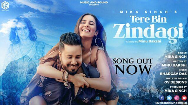 Tere Bin Zindagi Lyrics - Mika Singh