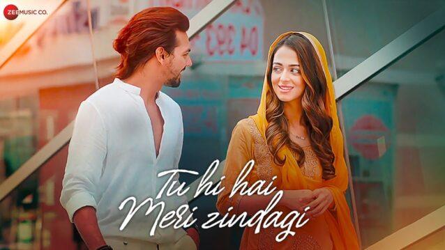 Tu Hi Hai Meri Zindagi Lyrics - Nikhil D'Souza